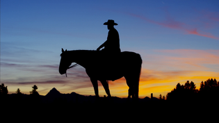 silhouette-of-cowboy-rider-at-sunset-wild-west-area-canada_4ki36ljrx__F0000.png