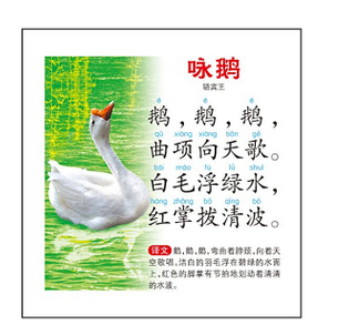 300-poems-of-Tang-Dynasty-parenting-books-Learn-Chinese-Character-pinyin-Cards-Chinese-books-for-children.jpg