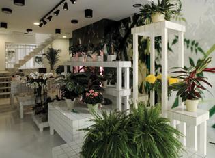 Aktipis Flower Shop