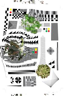 plants_grid_3_a8_400.jpg