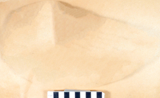 USNM-V-18676_1-.jpg