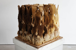 Hilary Berseth, Programmed Hive 7, 2008