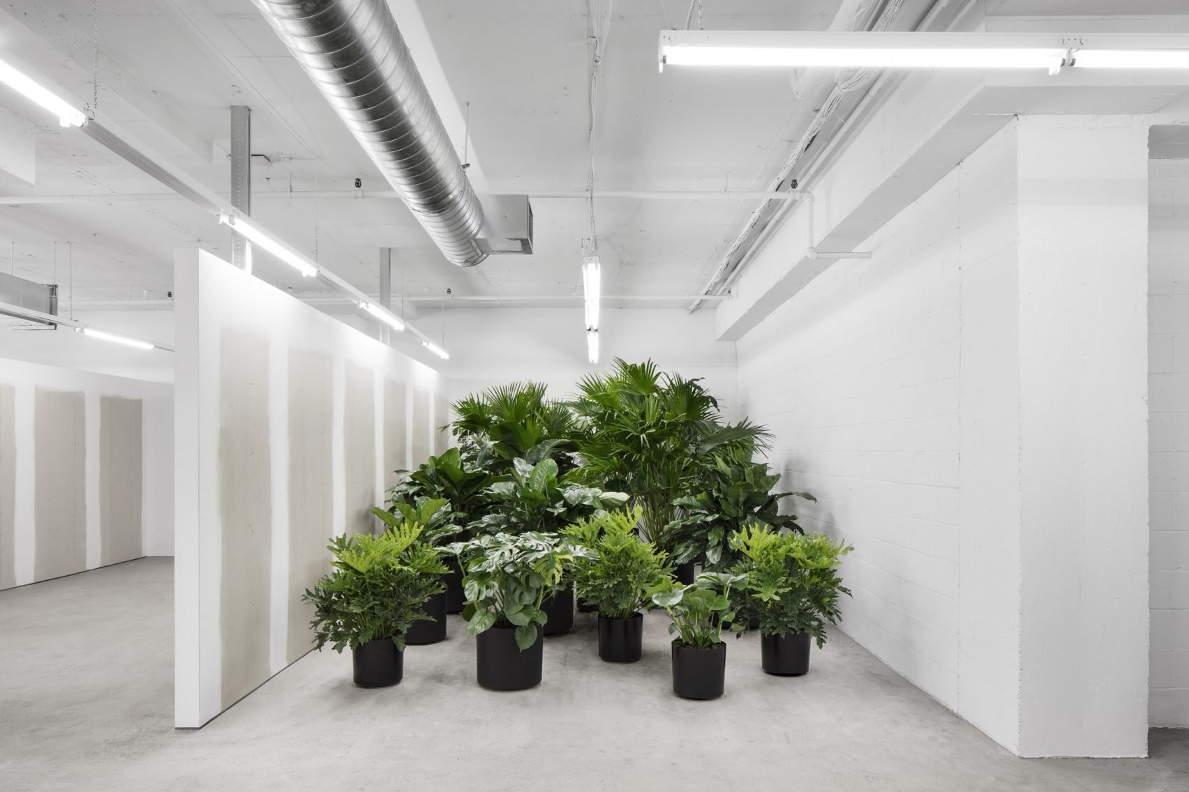 ssense-atelier-barda-offices-interiors-montreal-canada-_dezeen_2364_col_7-1704x1136.jpg