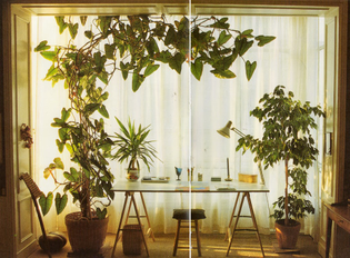 Decorating-with-Plants-1986.jpg