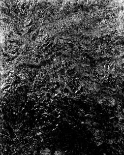 James Welling, April (B35), 1980. Gelatin silver contact print.