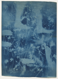 Robert Rauschenberg with Susan Weil Untitled c. 1950