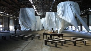 Ann Hamilton * habitus * The Fabric Workshop and Museum