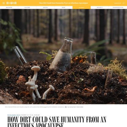 How Dirt Could Save Humanity From an Infectious Apocalypse