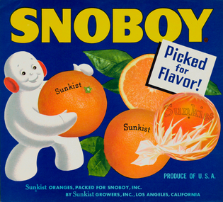 Snoboy.jpg