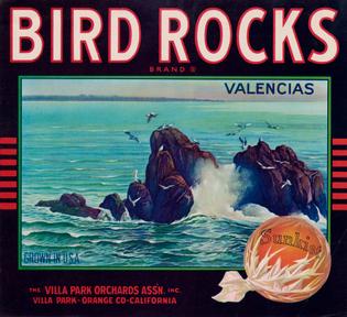 Bird-Rocks.jpg