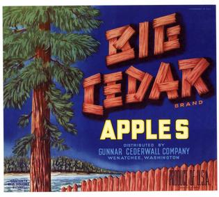 Big-Cedar.jpg