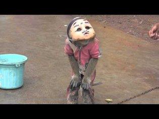Street Monkey In Mask in Indonesia