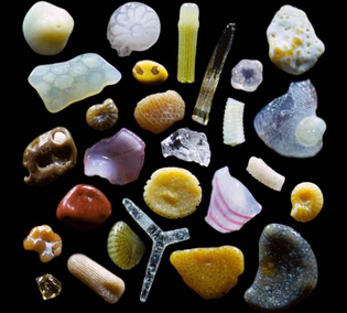 Magnified Sand, National Geographic