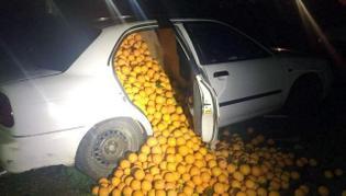 oranges car