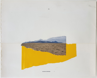 American Landscape 1 - Maarten Van Noort, 2010