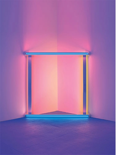 richard-shiff-on-dan-flavin-in-series-and-progressions-4.jpg