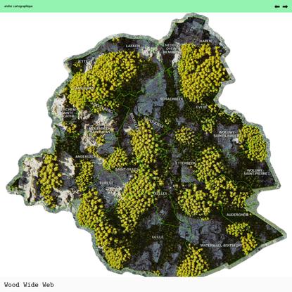 Wood Wide Web - atelier cartographique