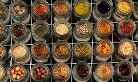 Seed-Diversity-in-the-Mil-007.jpg