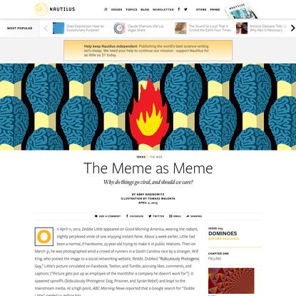 The Meme as Meme - Issue 23: Dominoes - Nautilus