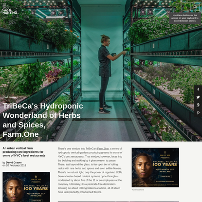 TriBeCa's Hydroponic Wonderland of Herbs and Spices, Farm.One
