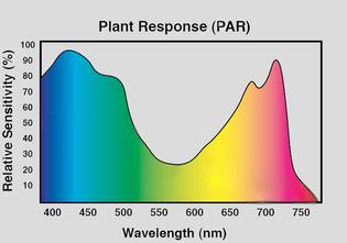 PAR-Spectrum-Graph.jpg