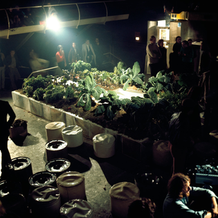 The-Vegetable-Garden-House-part-nightclub-part-architecture-school-at-Space-Electronic-Florence-1971.jpg