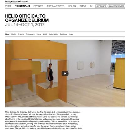 Hélio Oiticica: To Organize Delirium | Whitney Museum of American Art