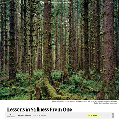 Lessons in Stillness From One of the Quietest Places on Earth