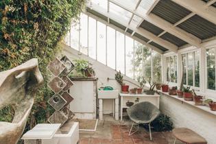 Haarkon-Hepworth-Sculpture-Garden-Plants-Tate-Cornwall-Painter-Artist-geranium.jpg