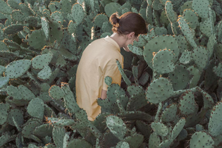 Still pulling cactus needles out of my ass, 2018