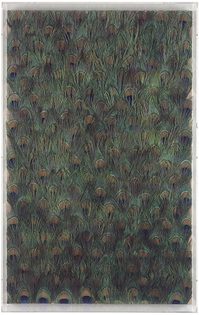 carol-bove-peacock.jpg
