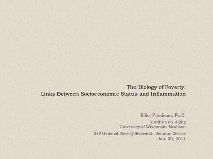 Friedman-01-20-2011.pdf