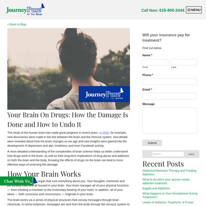 Your Brain On Drugs: How the Damage Is Done and How to Undo It - JourneyPure River