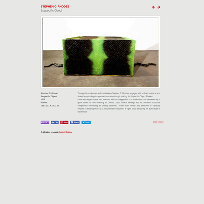 Stephen G. Rhodes - Ssspecific Object - Contemporary Art