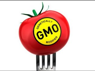 Listener Argues Against GMO Food Labeling