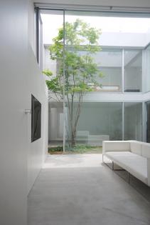 Shinichi Ogawa & Associates