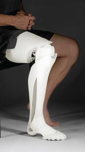 f2a39_artificial-leg.jpg