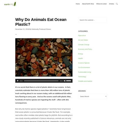 Why Do Animals Eat Ocean Plastic?