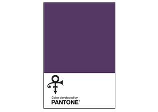 Pantone-inspired-by-Prince.jpg