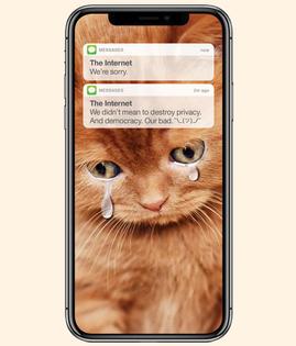 13-internet-cat-apology.w512.h600.2x.jpg