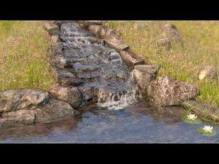 Phoenix FD 3 Water Test