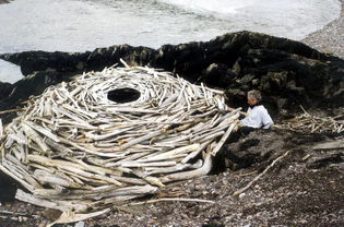 andy_goldsworthy_rivers_and_Tides_enclosure_1024x1024.jpg?14923057866056488316