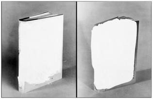 john-baldessari-two-voided-blocks_0.jpg