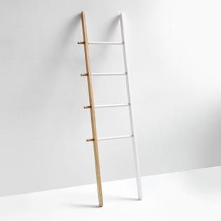 hub-white-ladder.jpg