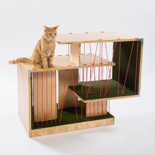 string-theory-rnl-architects-for-animals-fixnation-2016-los-angeles-usa-meghan-bob_dezeen_936_0.jpg