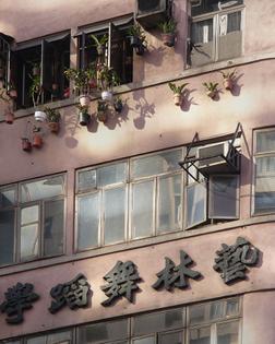 Michael Wolf - Hong Kong Flora