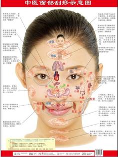 facial-scraping-scraping-diagrams-wall-charts-tcm.jpg