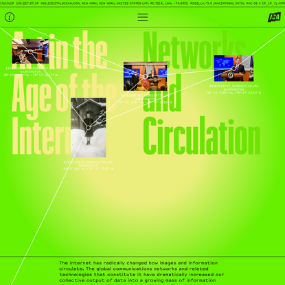 Art in the Age of the Internet - Networks and Circulation