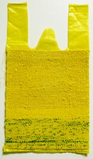 kim-this-is-not-a-plastic-bag.jpg