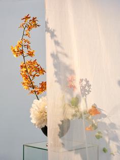 vz_flowershadow_163_r1.jpg?format=1000w